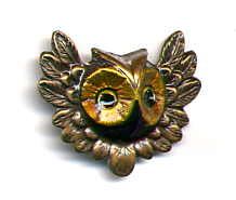 Owl Head button