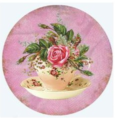Teacup - Fuschia